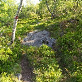 Lusaskard via Skagasete 010