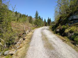 Kvålen-traktorveg-Skagasete-013