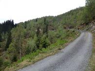 Kvålen-traktorveg-Skagasete-028