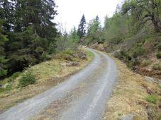 Kvålen-traktorveg-Skagasete-035