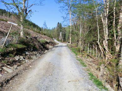 2018 Kvålen-Åsen-Fadnastølen-002