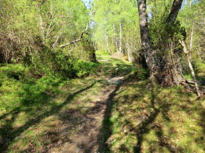 2018 Kvålen-Åsen-Fadnastølen-028