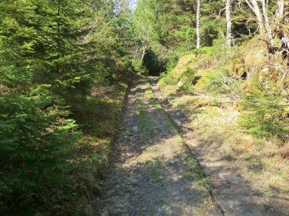 2018 Kvålen-Åsen-Fadnastølen-036
