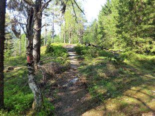 2018 Kvålen-Åsen-Fadnastølen-048