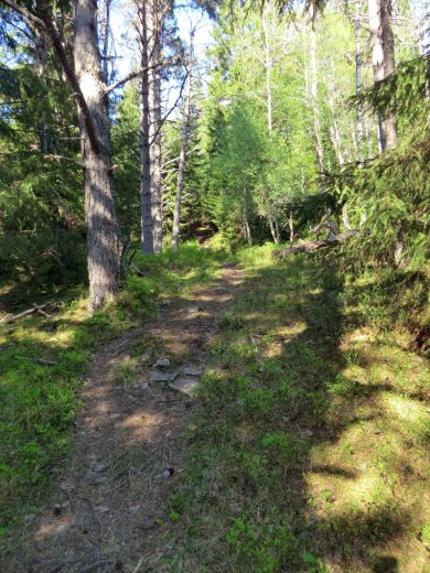 2018 Kvålen-Åsen-Fadnastølen-053