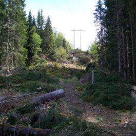 Hangsete via Bjørgahaug 010