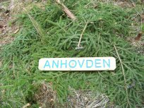 Hangsete via Bjørgahaug 011