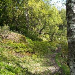 Hangsete via Bjørgahaug 015