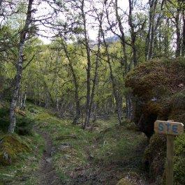 Hangsete via Bjørgahaug 018