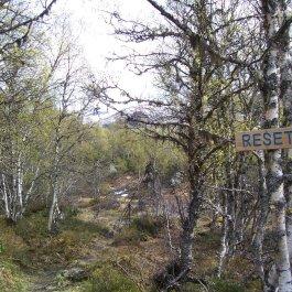 Hangsete via Bjørgahaug 021