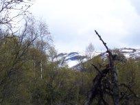 Hangsete via Bjørgahaug 022