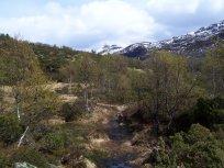 Hangsete via Bjørgahaug 024