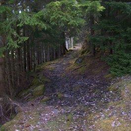 Njøs-Fadnastølen-019