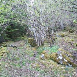 Njøs-Fadnastølen-031