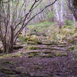 Njøs-Fadnastølen-032