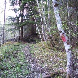 Njøs-Fadnastølen-035