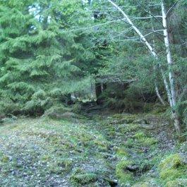 Njøs-Fadnastølen-036