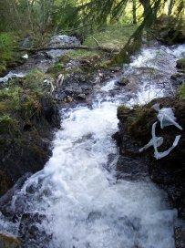 Njøs-Fadnastølen-049