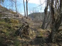 Skahaug-Raumålsgrinda-013