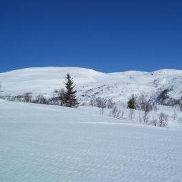 Kleppa-Kjeringafjell-April-012
