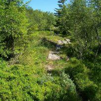Engjasete-Dalsbotnen-013
