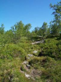 Engjasete-Dalsbotnen-015