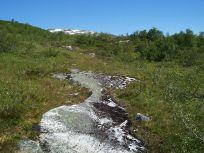 Engjasete-Dalsbotnen-025