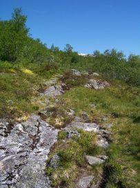Engjasete-Dalsbotnen-029