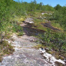 Engjasete-Dalsbotnen-031