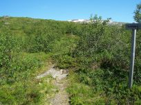 Engjasete-Dalsbotnen-034