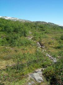 Engjasete-Dalsbotnen-035