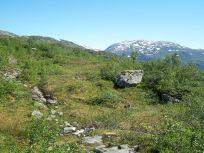 Engjasete-Dalsbotnen-036