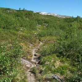 Engjasete-Dalsbotnen-037