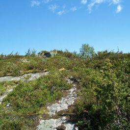 Engjasete-Dalsbotnen-044