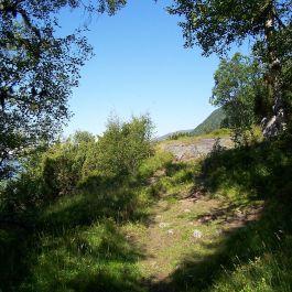 Engjasete-Hellesetberget-025
