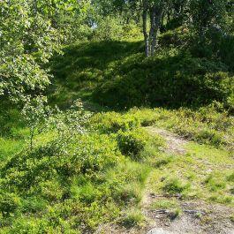 Engjasete-Hellesetberget-033