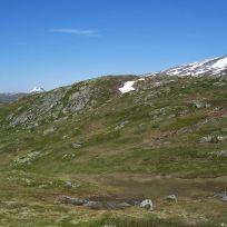 Engjasete-Mælen-026