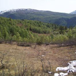 Kleppa-Stokksete-004