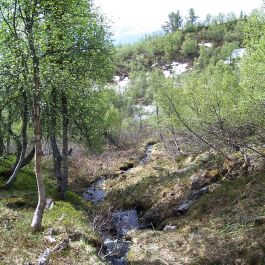 Kleppa-Stokksete-011