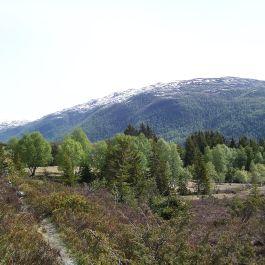 Kleppa-Stokksete-018