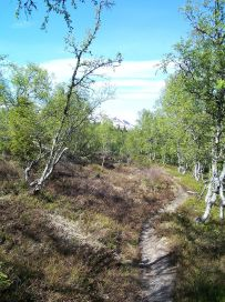 Skahaug-Stokksete-010