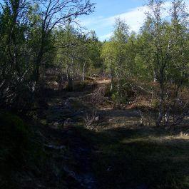 Skahaug-Stokksete-015