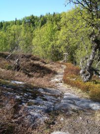 Skahaug-Stokksete-019