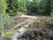 Skahaug-Stokksete-023