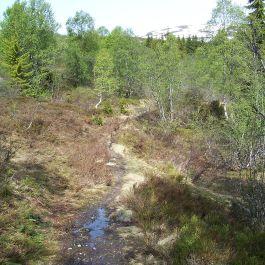 Skahaug-Stokksete-028