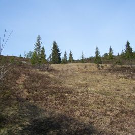 Skahaug-Stokksete-029