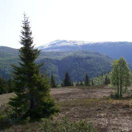 Skahaug-Stokksete-038