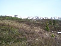 Skahaug-Stokksete-041