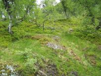 Fadnastølen-Havrane-041