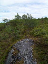 Fadnastølen-Havrane-045